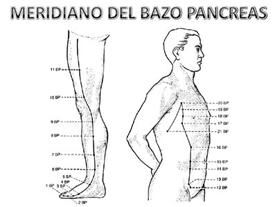 Meridiano-bazo-pancreas